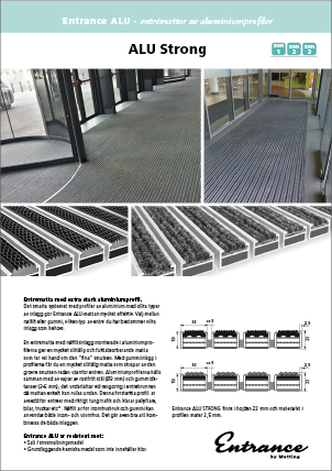 Entrance by Matting - ALU STRONG